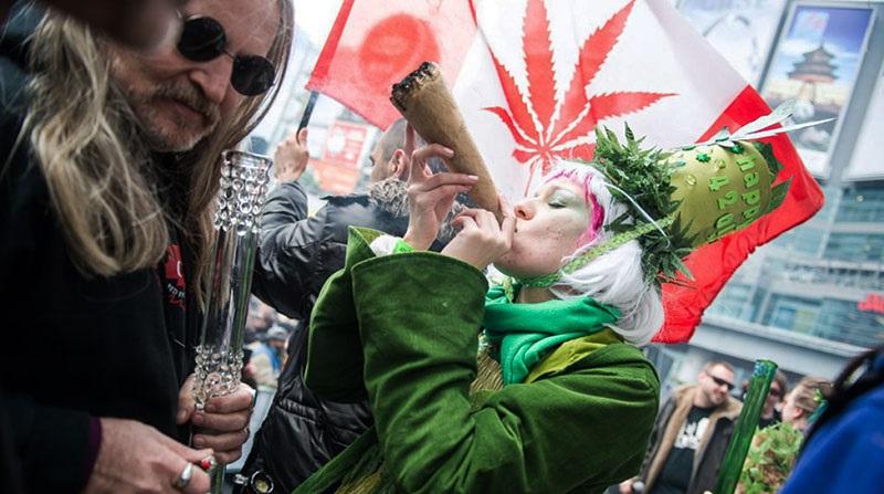 Амстердам фестиваль конопли стоп марихуаны