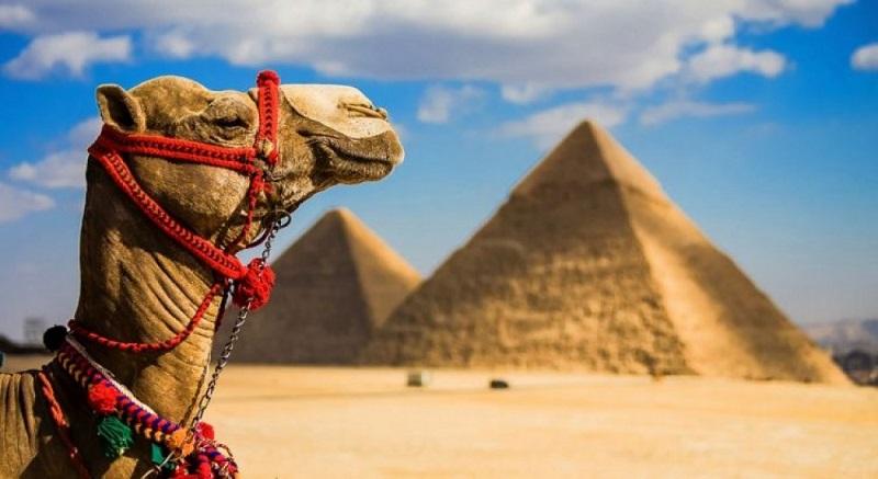 Это может пригодиться… О Египте