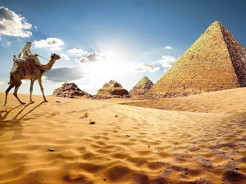 Немецкие СМИ: гости Египта, которые находятся в самоизоляции, остаются без пищи и гигиенических средств